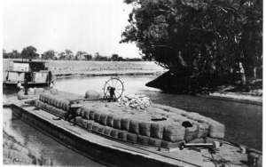 Australia Darling River Loading Wool-Tolarnost 1914