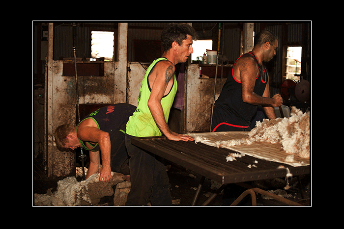 Shearing-Colours
