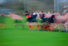 The Rugby Game