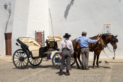 Ronda Carriage Business