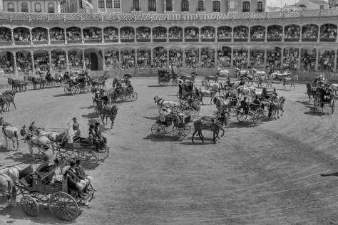 The Carriages bw