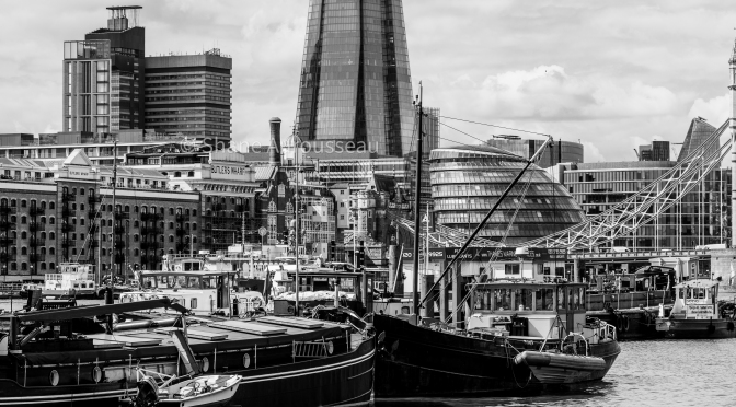 Along the Thames by Shane A